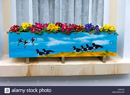 Decorative Window Boxes Decorative window box UK Stock Photo Royalty Free Image 58