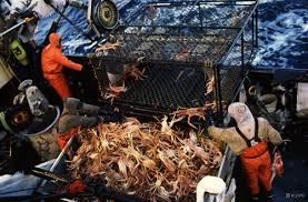 King Crab Leg Size Chart Buy Alaskan King Crab Alaska King Crab Legs Great