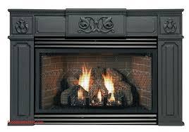 gas fireplace brands gas fireplace reviews best of propane insert gas fireplace insert reviews ratings