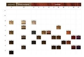Igora Colour Chart Schwarzkopf Igora Color10 Permanent 10 Minute Color Creme 9 00 Extra Light Blonde Natural Extra