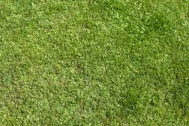 grass texture game. Download Grass Texture Game