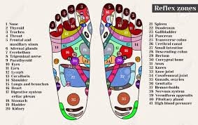 Foot Chinese Medicine Chart Acupuncture Points On The Feet The Reflex Zones On The Feet
