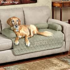 pet couch cover tar sofa reviews protector waterproof