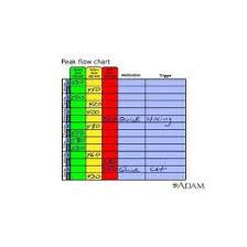 Peak Flow Reading Chart Peak Flow Chart 7 Documents In Pdf Word 103948580055 Peak
