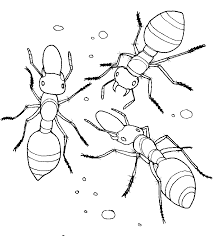 Small Picture Printables Ant Coloring Pages School Projects Pinterest School