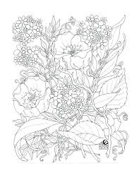 Adult Coloring Pages Flowers Flowers Coloring Book Page For Adults
