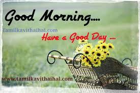 Hd Quotes Good Morning Wallpaper