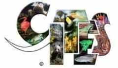 Международная торговля видами дикой фауны и Флоры курсовая Международная торговля видами дикой фауны и флоры курсовая файлом