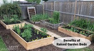 benefits of raised garden beds grow a