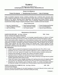 Resume Core Competencies Examples Delectable Resume Template Project Manager Core Competencies Resume Examples