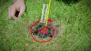 How To Set The Pattern On Rain Bird Rotor Sprinklers
