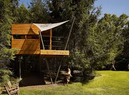 tree house designs and plans. Philly Backyard Contemporary Tree House Ideas Designs And Plans Y