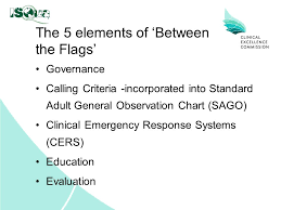 Between The Flags Observation Chart Recognition And Management Of The Deteriorating Patient