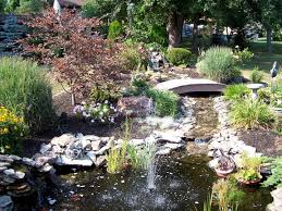 Backyard Ponds Small Backyard Ponds Pictures Backyard Decorations By Bodog