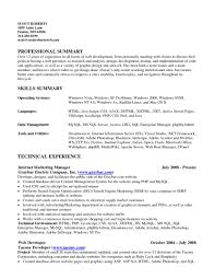 summary of qualifications examples for resume example of key examples of qualifications on a resume organize resume resume key skills in resume for software engineer