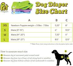 Dog Diaper Size Chart Pet Magasin Reusable Dog Diapers 3 Pack Small