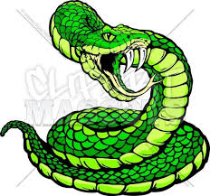 rattlesnake head clipart. Delighful Head Rattlesnake Clipart Rattlesnake Head Image Result For Viper Vector Black  And White Download Throughout Head Clipart L