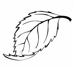 Small Picture leaf coloring pages 4 ColoringPagehub