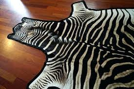 felted zebra skin rug grade a outsourcesol llc zebra skin rug zebra skin rug repair