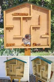 woodworking projects for kids bird house. 8 brilliant backyard squirrel feeders. kids woodworking projectswoodworking projects for bird house s