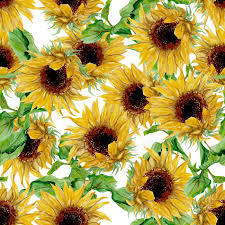 Sunflower Pattern New Seamless Pattern With Yellow Sunflowers Painted In Watercolor