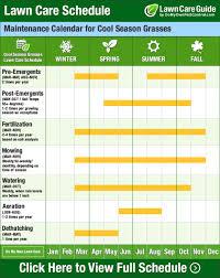 Lawn Care Calendar Schedule Diy Tips Year Round Diy