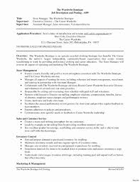 Executive Associate Sample Resume Sample Resume For Sales Associate Best Of Retail Consultant Job 17