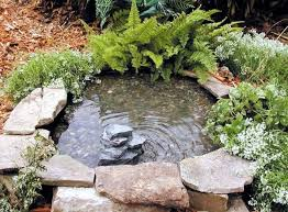Small Picture Create a mini garden pond in the mortar bed and replant DIY Idea
