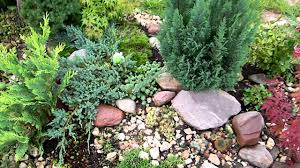 Small Picture small rock garden YouTube