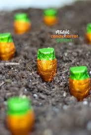 candy garden. Magic Candy Carrot Garden! How To Grow Chocolate Carrots For Spring Using \ Garden