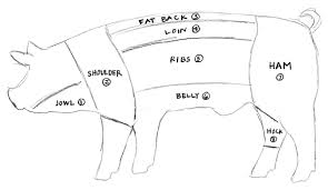 pig part diagram pig database wiring diagram images watch more like parts of a butcher pig