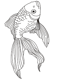 Small Picture Goldfish Coloring Page A Realistic Goldfish Drawing