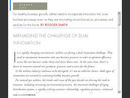 Nibco 1810 Flow Chart Managing The Challenge Of Dual Innovation