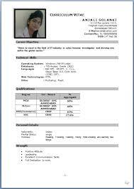 Best Ideas Of Job Application Cv Example Job Application Cv Example