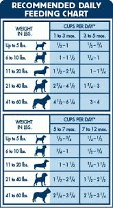 Puppy Feeding Chart Life Protection Formula Dry Puppy Food Chicken Brown Rice