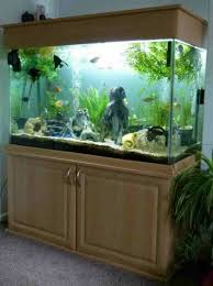 japanese style aquarium stand with neutral cabinet design ideas
