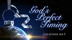 Image result for God's perfect timing pics for christmas