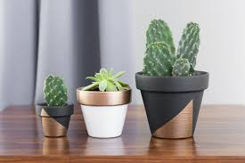 modern plant pots articles with modern plant pots uk tag modern