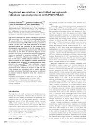 Functions And Pathologies Of Bip And Its Interaction Partners J