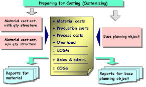 Calculation Of Cogm And Cogs Sap Documentation