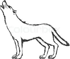 Drawn Wolf Hand Drawn Sketch Cartoon Stock Vector Colourbox