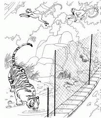 Small Picture Zoo Animals Coloring Pages Games Buffalo coloring pages zoo
