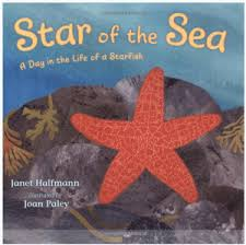 starfish for kids kindergarten lessons starfish book star of the sea