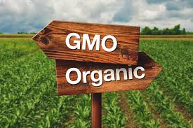 organics v conventional v gmos debate grows over farm yields and organics v conventional v gmos debate grows over farm yields and sustainability genetic literacy project