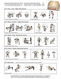 Full Gym Workout Chart Workout Routine A Healthy Fitness Full Body Training Plan
