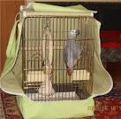 Чехол для клетки с попугаями