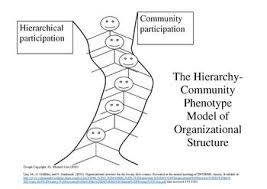 Organizational Structure Wikipedia