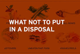 What Not To Put In A Garbage Disposal Insinkerator