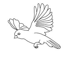 Small Picture Amazing Bird Flying Floating Coloring Page Color Luna