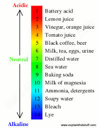Silver Acid Test Color Chart How Do Ph Meters Work Measuring Acidity